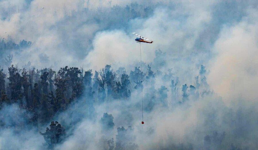 عکس روز، أبی بر آتش استرالیا