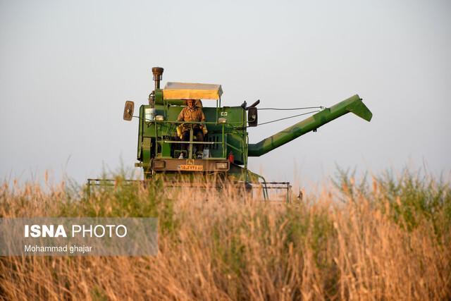 کشاورز کارت؛ یاری رسان خرده مالکها