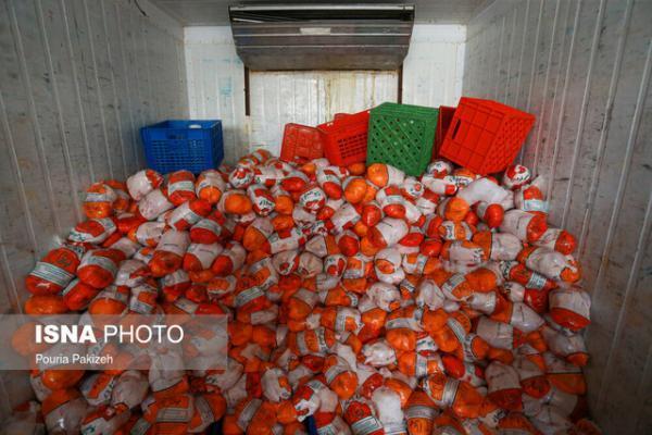 عادی شدن شرایط بازار مرغ در تهران، هیچ صفی برای خرید مرغ وجود ندارد