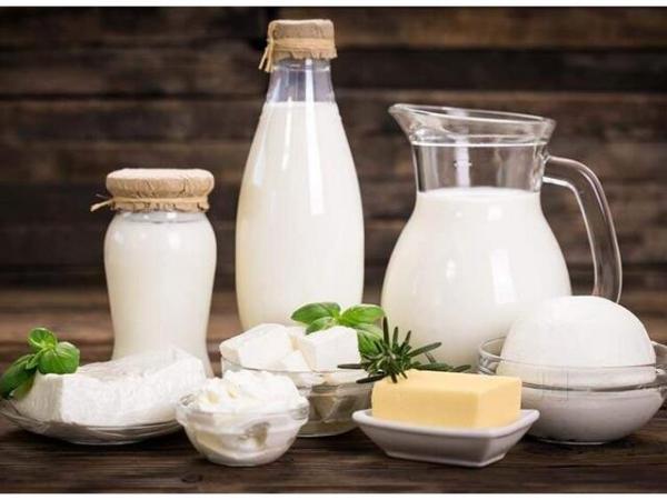 3000 تن شیر خام در محمودآباد فراوری شد، ارزش مالی 150 میلیاردی