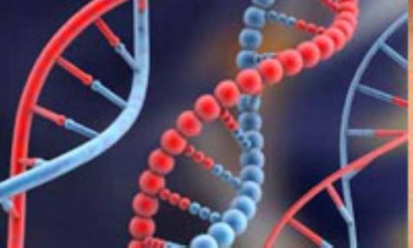 باز هم یک ژن دیگر